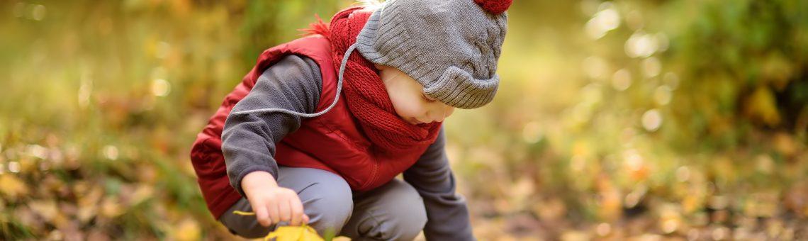 Herbstfreuden: Ein kleiner Junge liest Blätter auf.